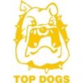 Top Dogs Nový Jičín