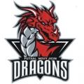 Dragons Nový Jičín
